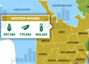 2017 Western Ontario Planting Intentions