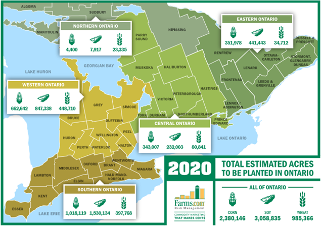 2020 planting intentions survey